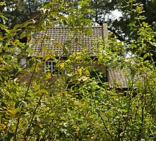 Cook's Cottage #1 by Andrew Holford
