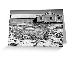 Shed Front - Tubbo Station (2008) Greeting Card