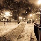 Winter Wonderland by MeBoRe