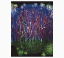 Many Coloured Reeds 2-T by Robert Burns