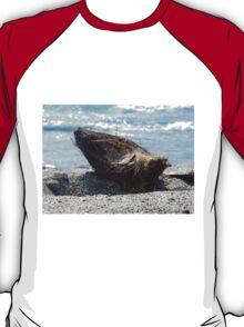 Coconut Husk T-Shirt