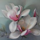 Magnolias in Duo by jkirstein