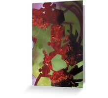 Untitled in red and green Greeting Card
