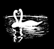 Black & White Swan by Kara  Davison