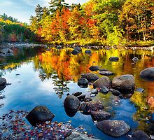 Autumn Colors Reflections  by George Oze