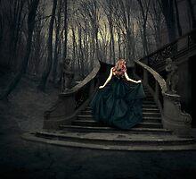 The Princess of Glory by swin