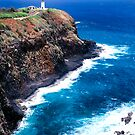 Kilauea Lighthouse (Vertical) by Robert Yone