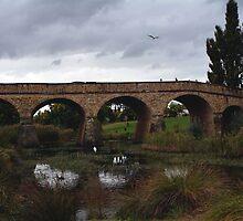 Richmond Bridge by ladgrove