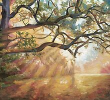 Sunlight Forest by Emily Luella
