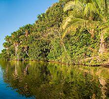 Sandoval lake, Madre de Dios, Peru by juan jose Gabaldon