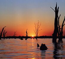 Mulwala sunset by Rosie Appleton