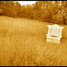 Chair in Golden Field by Julian Wilde