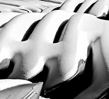 Lake Calhoun Canoes by MNDustyLens