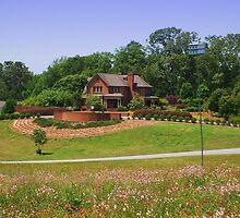 Fran Hanson Discovery Center, SC Botanical Gardens by Artlife