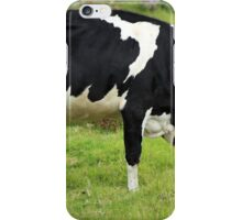 Holstein Cow Grazing iPhone Case/Skin