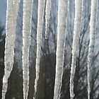 Close-up Icicles by lroof