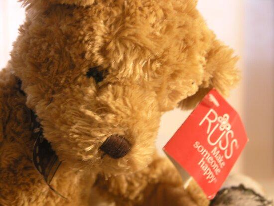 Teddy's Loney by G. Patrick Colvin