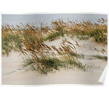 North Carolina Dunes Poster