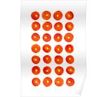 Tomato in rows Poster