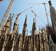Gaudi's Church and Cranes  by Woodie