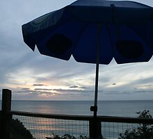From the balcony, Pt. Willunga, S.A. by elphonline