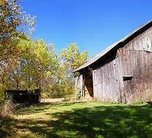 Taggert Road Barn by LeeMascarello