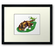 Frog Leaps over Kitten's Tail Framed Print