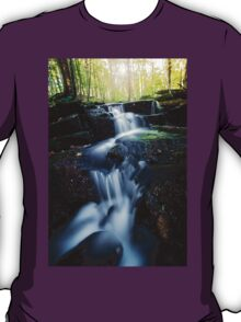 Mountain Stream in September T-Shirt
