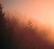 SUNRISE, CLINGMANS DOME by Chuck Wickham