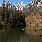 Tetons by Harry Oldmeadow