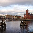 Cardiff Bay by Kevin Jones