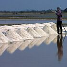 Salt Harvest by Dave Lloyd