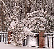 snowy fence by lindseychase06