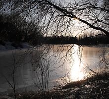 Sunsetting On A Small Town Pond by Tracy Faught