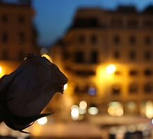 Rose at the Spanish Steps by cocot101