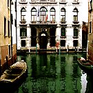 GREEN STREETS OF VENICE by Scott  d&#x27;Almeida