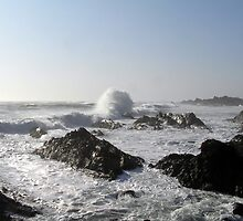 Sea Spray by Eunice Atkins