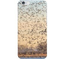 Countless Morning in March iPhone Case/Skin
