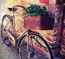 Retro Bike by pmathey