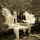 Huge Sepia Icicles by LeeMascarello