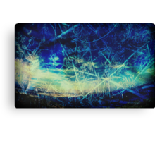 Lost In A Sea of Wood Canvas Print