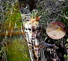 Medicine Tree by tkrosevear