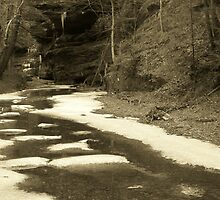 Sepia Ice in the Creek by LeeMascarello