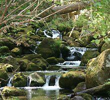 Watson Falls Creek by SKNickel