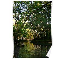 Springtime on the Hillsborough River Poster