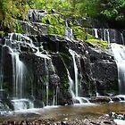 Purakaunui Falls by Kathy Reid