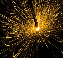 For the love of Sparkles! by Paul Davis