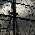 Cutty Sark Masts and Rigging by Roberto Herrett