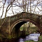 Pack Horse Bridge - Westerdale by Trevor Kersley