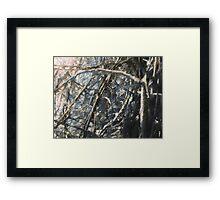 Frozen sticks Framed Print